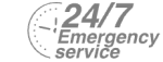24/7 Emergency Service Pest Control in Chigwell Row, Chigwell, IG7. Call Now! 020 8166 9746