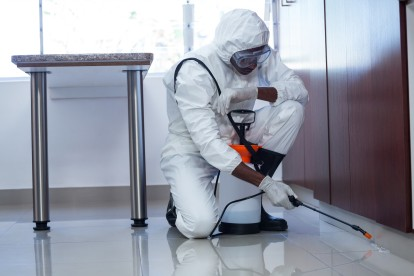 Emergency Pest Control, Pest Control in Chigwell Row, Chigwell, IG7. Call Now 020 8166 9746